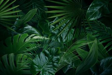 Many bright green tropical leaves as background - fototapety na wymiar