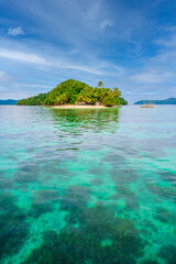 Inaladelan Island (also known as German Island) in Port Barton Bay with paradise white sand beaches...