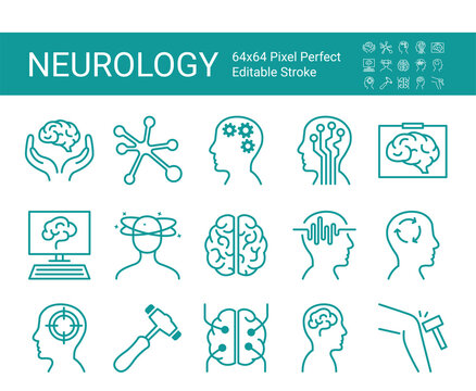 Set of icons of neurology. Vector icon as brain, neurologist, nervous system, nerves, equipment. Editable vector stroke. 64x64 Pixel Perfect.