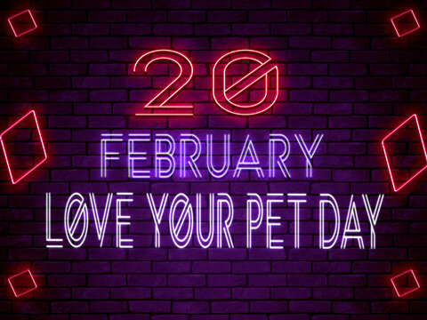 20 February Love Your Pet Day Neon Text Effect on Bricks Backgrand