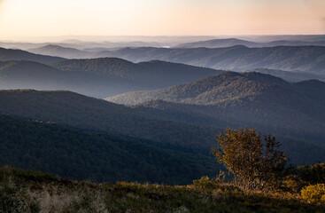 Bezkresny las porastający dzikie górskie szczyty, Bieszczady, Polska - fototapety na wymiar