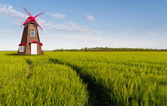 Windmill in a field of wheat