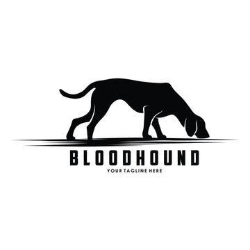 bloodhound dog tracking silhouette logo design vector illustration