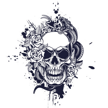 Skull poster design. Vector illustration of human skull with roses, snake and ink splash in engraving technique on black background.