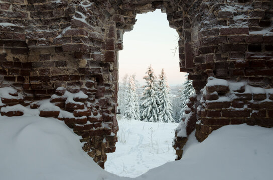 View of the snowy forest through a ruined brick wall. Abandoned monastery