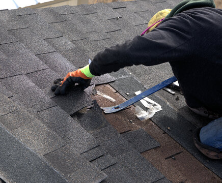 Roofer uses a blue pry bar to remove damaged shinlges during the repair of a residential roof.