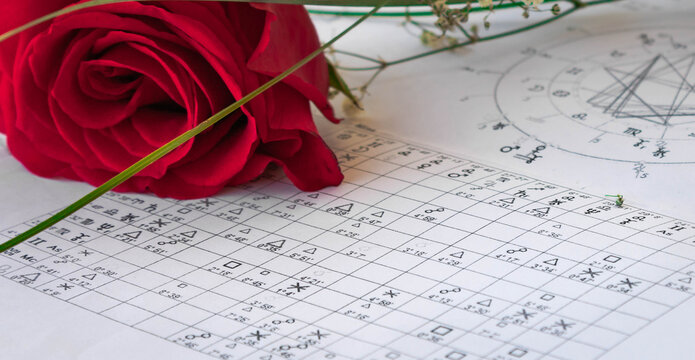 Close up of printed astrology  chart aspects with a red rose, st Valentine's  holiday astrology background