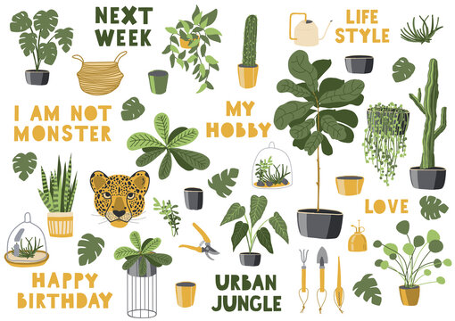 Collection jungle home. Text and elements. Urban jungle. life style.Hobbies and trendy home decor with plants, tropical leaves, cacti. Green plants. Jungle style home.Vector illustration.