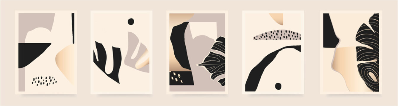 Minimalist abstract aesthetic illustrations with plants. Contemporary wall decor. Collection of creative artistic posters.