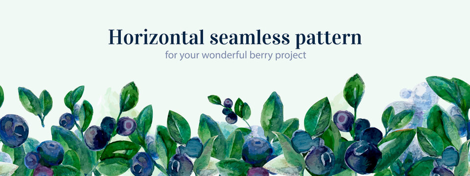 Horizontal watercolor blueberry seamless in watercolor style on white background. Seamless floral pattern. Color pattern, forest berry vector illustration.