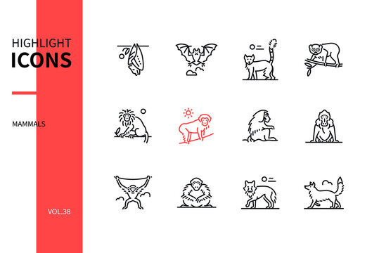 Different mammals - modern line design style icons set