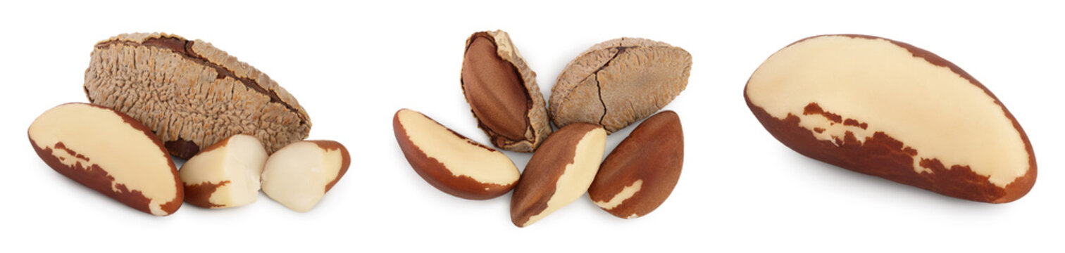 Brasil nuts in nutshell isolated on white background with clipping path and full depth of field. Set or collection