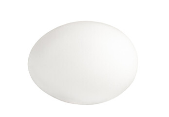 White chiken egg isolated on white background