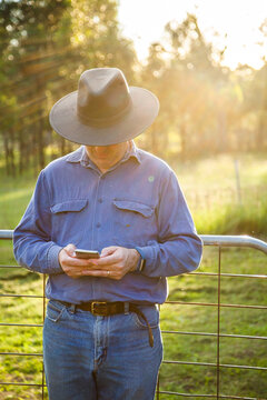 Man leaning on farm gate using mobile phone in afternoon light