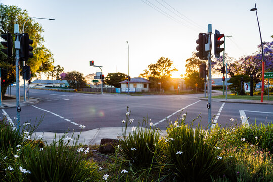 Garden and traffic lights at intersection at sundown