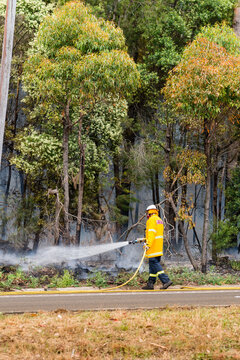 fireman putting out bushfire with hose