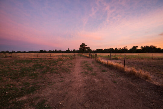 Colourful sunrise landscape of farming paddocks