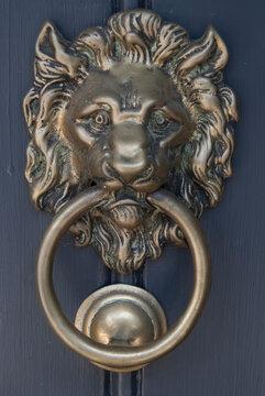 A gold lions head door knocker on a door.