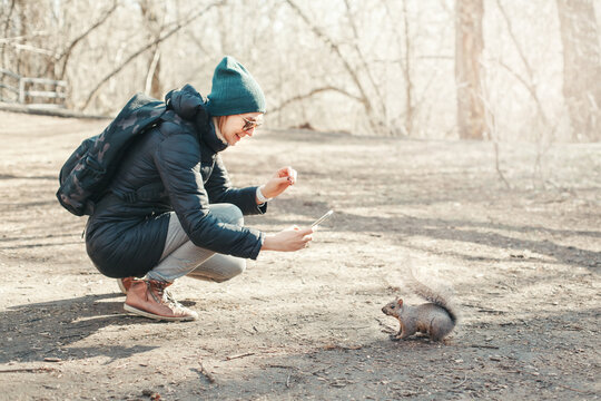 Woman Taking Picture Photo Of Squirrel In Park. Tourist Girl Snapping Photos Of Wild Animal