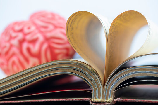 Love to read or learn language concept, brain and book pages folded into heart shape
