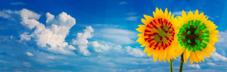 Sonnenblumen mit dem Covid-19-Virus. Im Hintergrund ein blauer Himmel mit Wolken als Panorama.