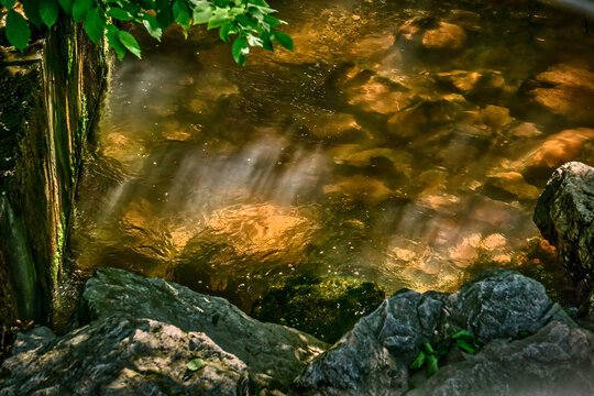 Rocky bottom bubble filled pool  in a small stream with vegitation is bathed in warm morning sunbeams