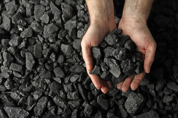 Obraz Man holding coal in hands over pile, top view. Space for text - fototapety do salonu