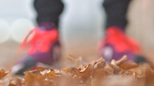 Foglie secche con scarpe sfocate sullo sfondo