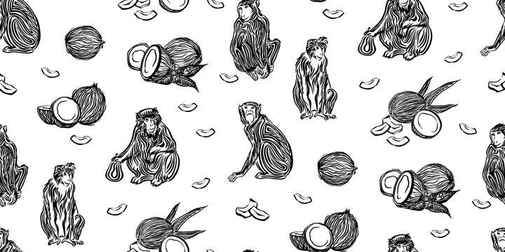 Seamless hand drawn outline sketch pattern of monkey and coconut. Endless black ink vector wildlife drawing of chimpanzee isolated on white background. Stylzed jungle wild animal illustration