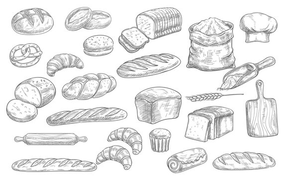 Bread and bakery food sketch vector icons baked loaf, rye and wheat bread, croissants and pretzel. Braided buns and french baguette, rolling pin, toque and scoop engraving retro bakery shop assortment