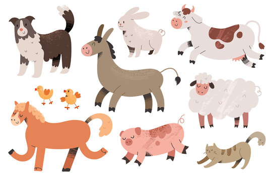 Cute farm animals collection, colored vector illustrations of cow, pig and sheepdog with textured effect. Colored doodle drawing isolated on white background.