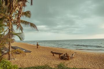 Krajobraz plaży z palmami kokosowymi i oceanem w tle.