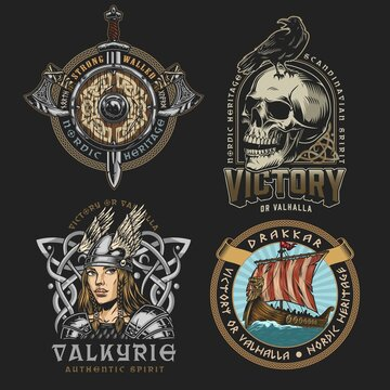 Viking colorful vintage designs