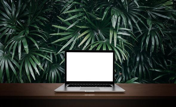 Modern laptop  isolated on green leaf background. 3D illustration.