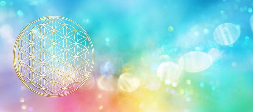 Blume des Lebens in einem leuchtenden Feld spektralfarbenen Lichts
