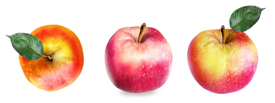 Color apples on white background