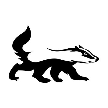badger logo design template inspiration, vector illustration