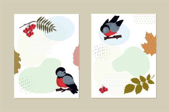 Set of cards, invitations. Birds bluebirds, mountain ash. A bunch of red berries. Stylized leaves of various trees. Abstract geometric shapes. Nature vector background. Ecology