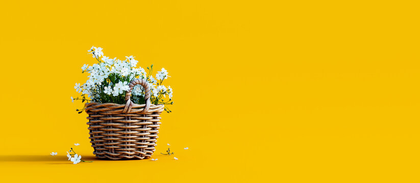 White flowers in wooden basket on yellow spring background 3D Rendering