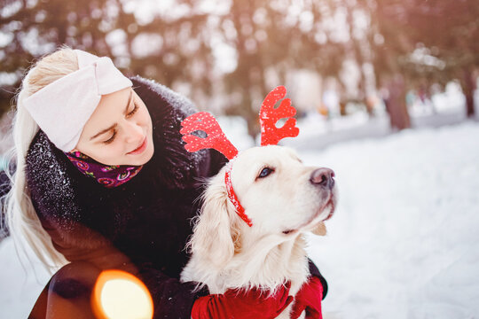 Christmas costume for dog, young beautiful girl walks with golden retriever in winter forest