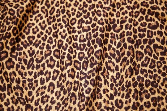 Leopard print picture, Leopard print image, cloth pattern texture.