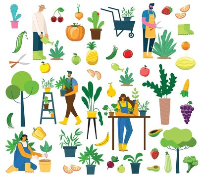Vector set of village people with organic food, flowers and plants