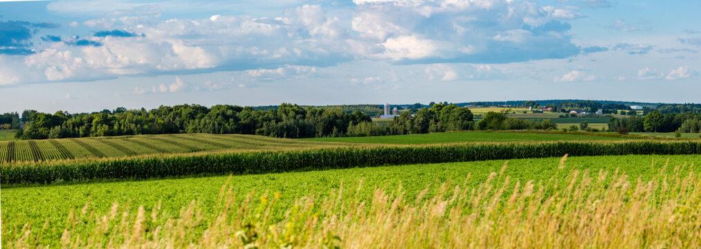 Central Wisconsin farmland in summer