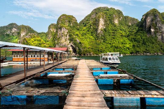 Scene at Halong Bay in Vietnam - Pearl Farm