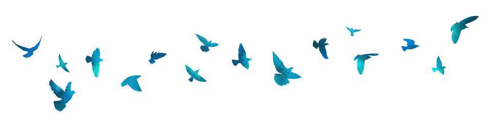 Bird watercolor. A flock of blue birds. Mixed media. Vector illustration - fototapety na wymiar