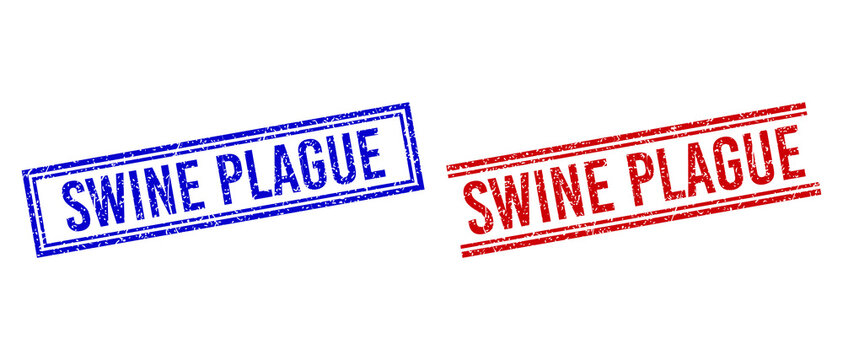 SWINE PLAGUE rubber imitations with grunge style. Vectors designed with double lines, in blue and red colors. Label placed inside double rectangle frame and parallel lines.