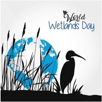 World Wetlands Day. This Is Sunset View