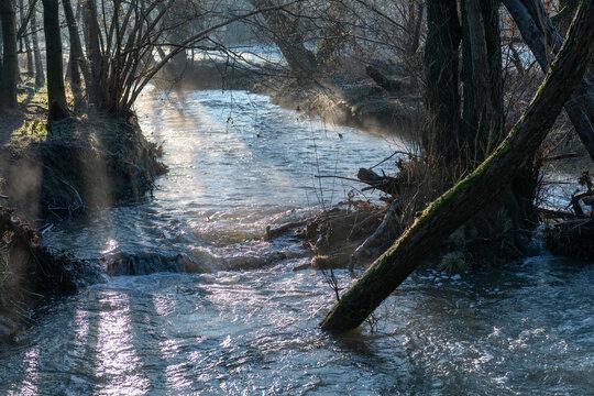 Der Hanfbach mit Hochwasser