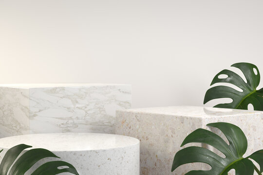 Modern Luxury Podium Set With Monstera Tropical Plant Abstract Background 3d Render