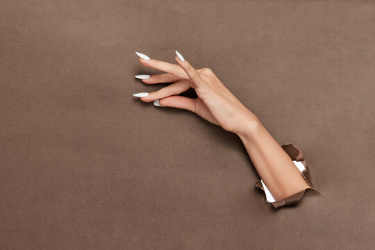 Female hand with long white nails sticking out of brown paper background
